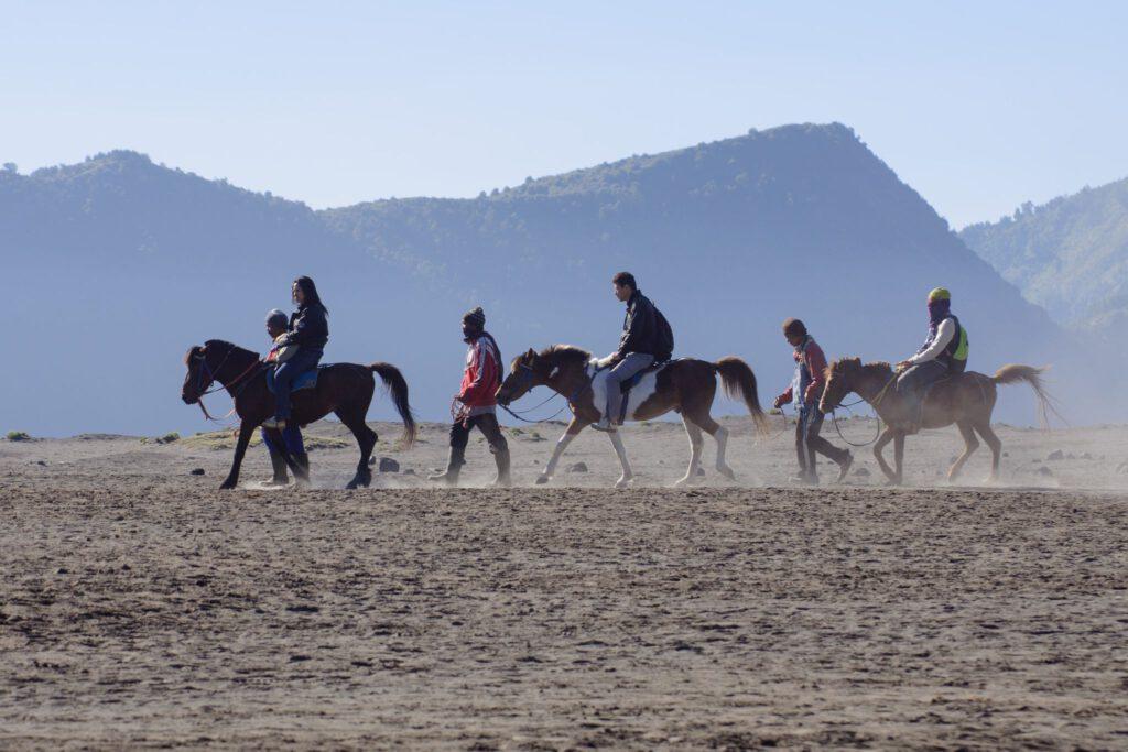 konie pod wulkanem bromo